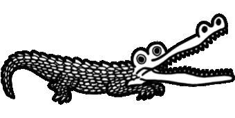 math crocodile